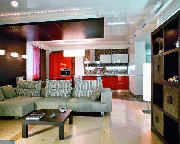 комната с кухней студией дизайн фото