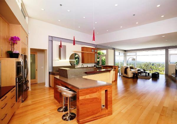 кухня студия с барной стойкой дизайн фото
