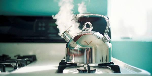 как очистить чайник от накипи в домашних условиях фото 8