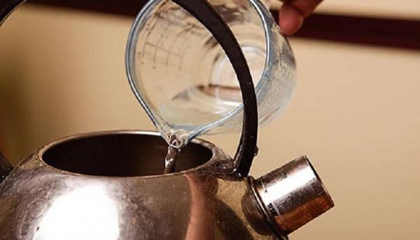 как очистить чайник от накипи в домашних условиях фото